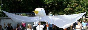 Dove Close Up